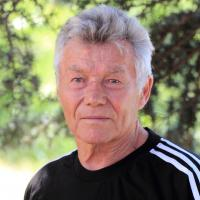 Владимир Николаевич Лаевский